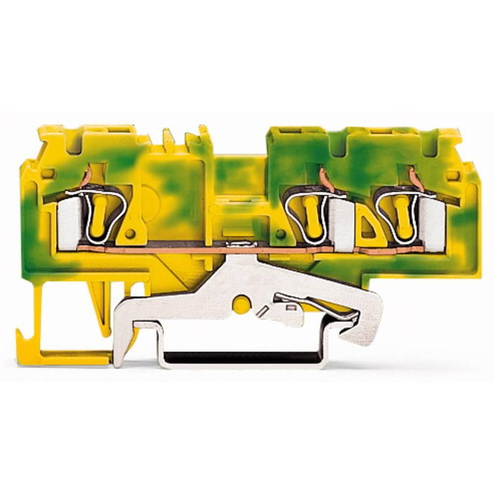 Jordklemme 5 mm Trækfjeder Belægning: Terre Grøn-gul WAGO 880-687/999-940 100 stk