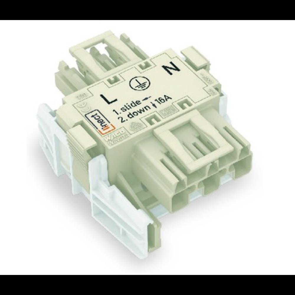 Strømforsyningsadapter WAGO Samlet poltal 3 Hvid 25 stk