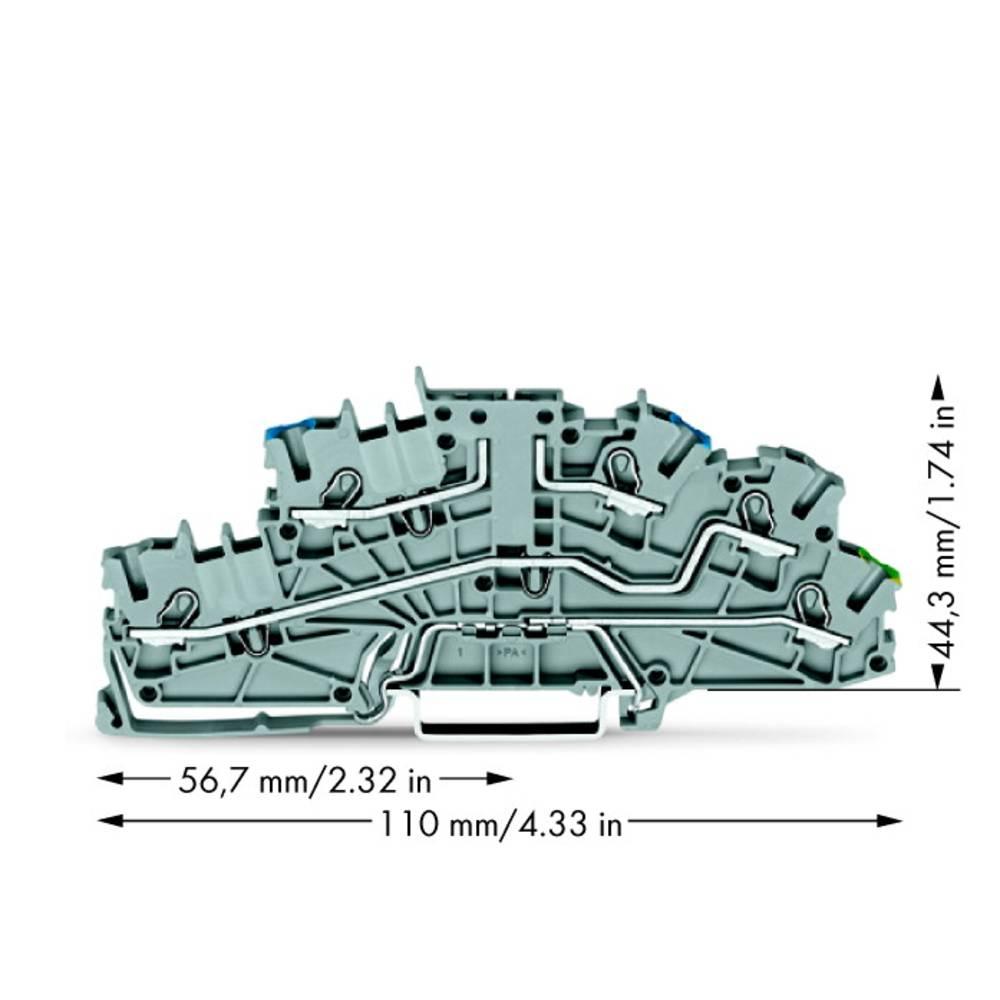 installations-etageklemme 5.20 mm Trækfjeder Belægning: N, L, Terre Grå WAGO 2003-6640 50 stk