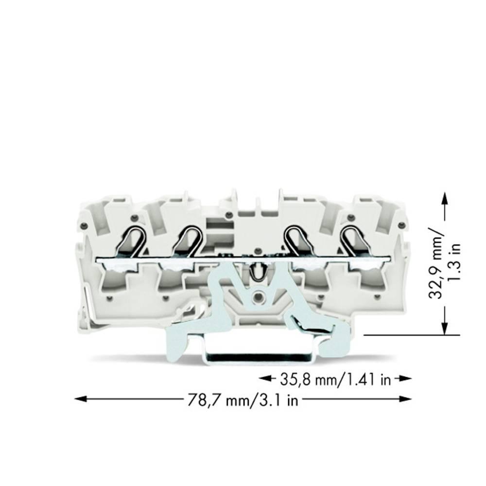 Skærmklemme 6.20 mm Trækfjeder Hvid WAGO 2004-1408 50 stk