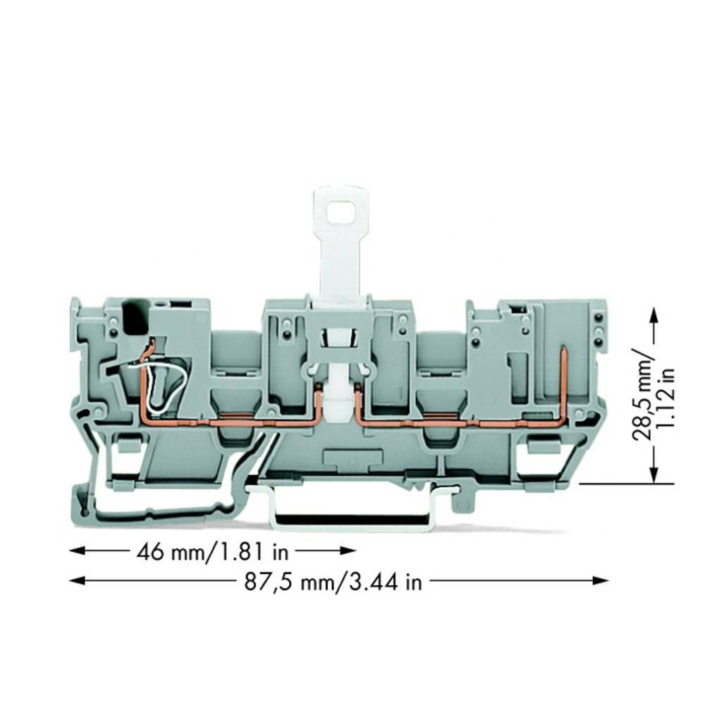 Basisklemme 5 mm Trækfjeder Belægning: L Grå WAGO 769-212 50 stk