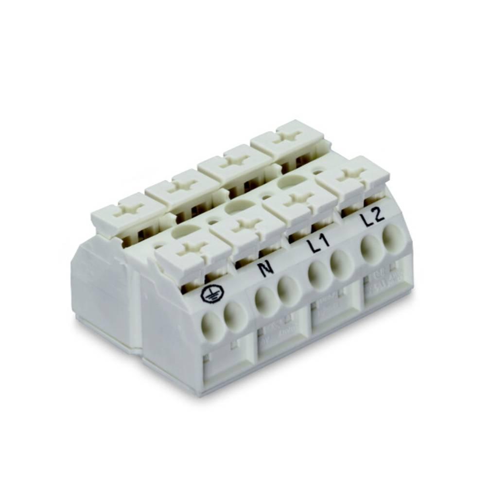 Enhedstilslutningsklemme Fjederklemme Hvid WAGO 862-1604/999-950 200 stk
