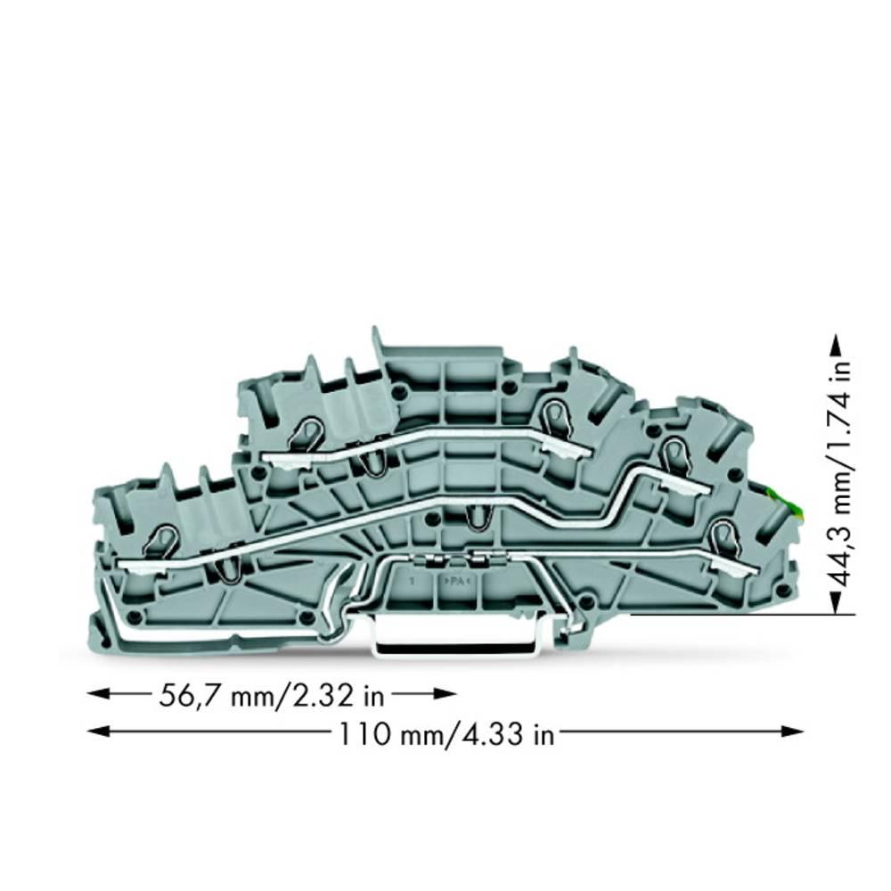 installations-etageklemme 5.20 mm Trækfjeder Belægning: L, L, Terre Grå WAGO 2003-6645 50 stk