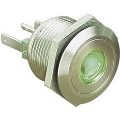 Bulgin MPI001/28/GN pritisna tipka z zaščito pred vandalizmom 24 V/DC 0.05 A 1 x izklop/(vklop) IP66 tipkalno 1 kos