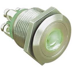 Bulgin MPI001/TERM/GN pritisna tipka z zaščito pred vandalizmom 24 V/DC 0.05 A 1 x izklop/(vklop) IP66 tipkalno 1 kos