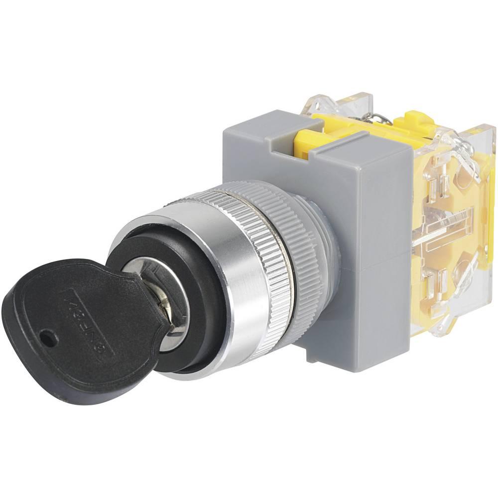 Stikalo na ključ 250 V/AC 5 A 1 x izklop/vklop 1 x 90 ° TRU Components Y090-A-11Y/21 IP40 1 kos