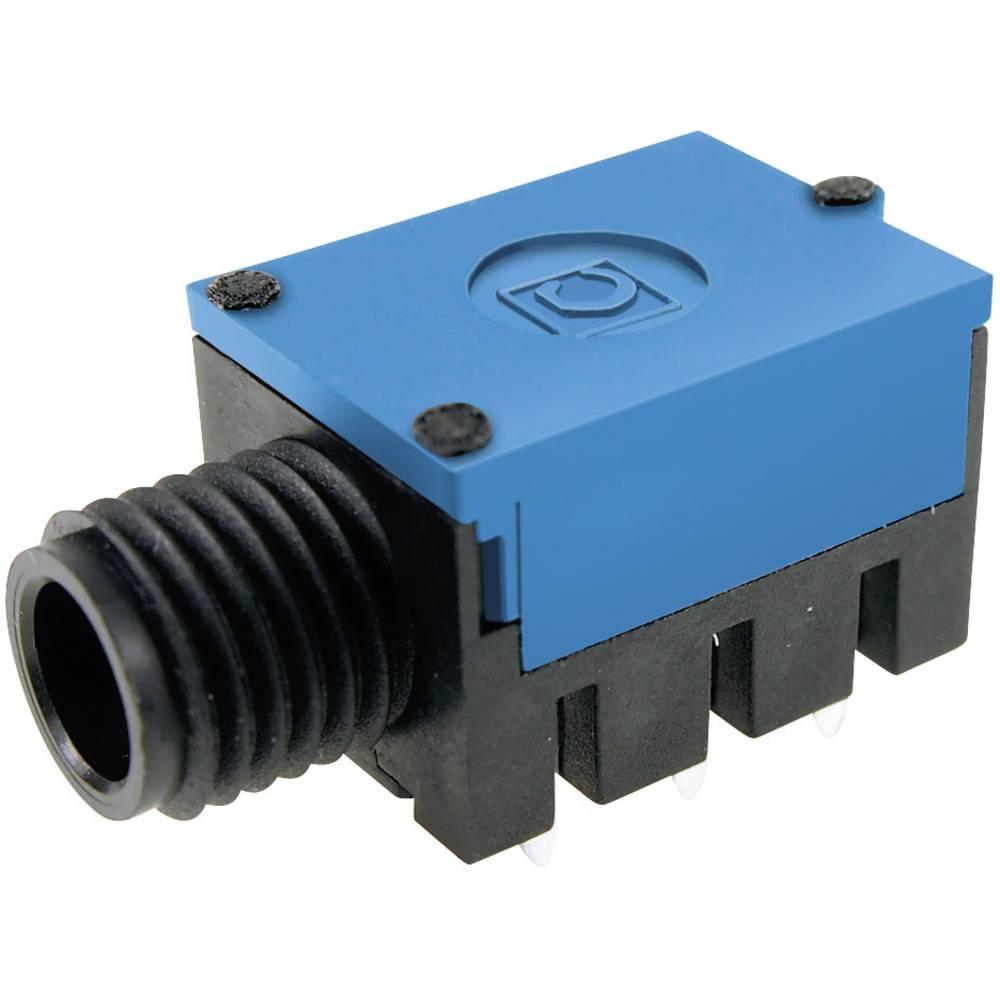 Cliff FC67815-Priključna doza za JACK vtič, 6.35mm, vgrajena horizontalno, število polov: 2/mono , črna, 1 kos