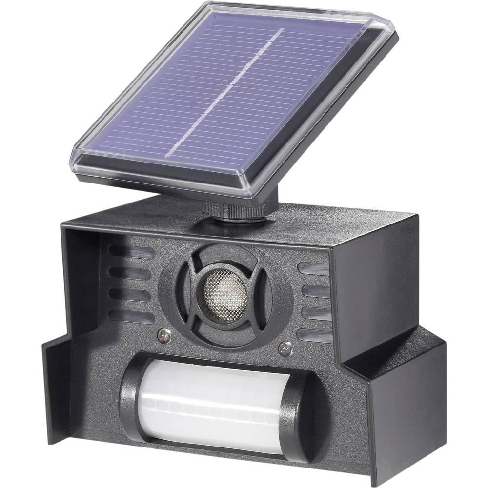 Solarni odganjalnik živali s senzorjem gibanja Conrad