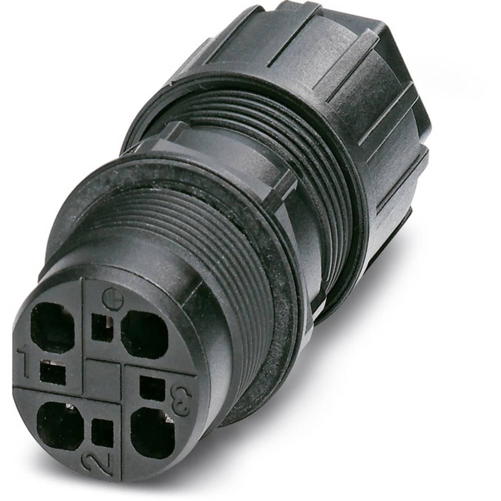 QPD W 3PE2,5 9-14 M25 DT BK - Wall bøsning Phoenix Contact QPD W 3PE2,5 9-14 M25 DT BK 1 stk