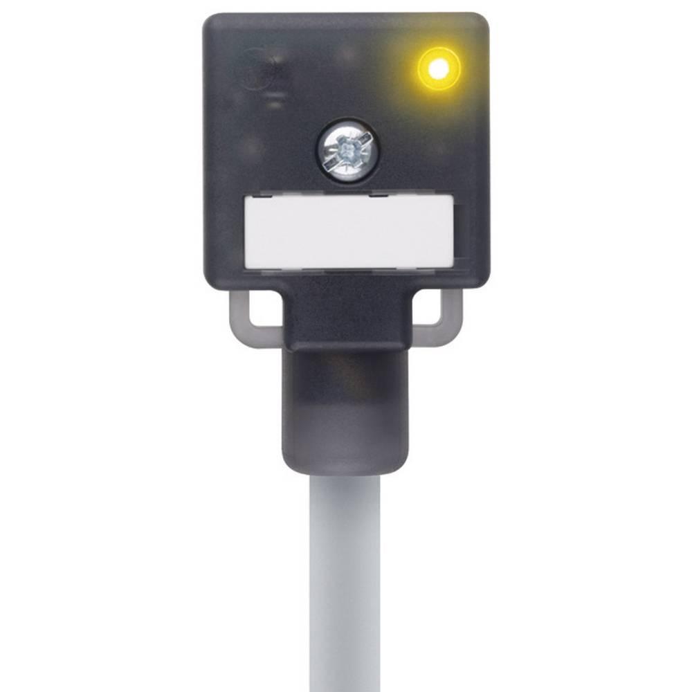 Valve stik konstruktionstype A Escha VA22-24.3-5/P01 Sort 1 stk