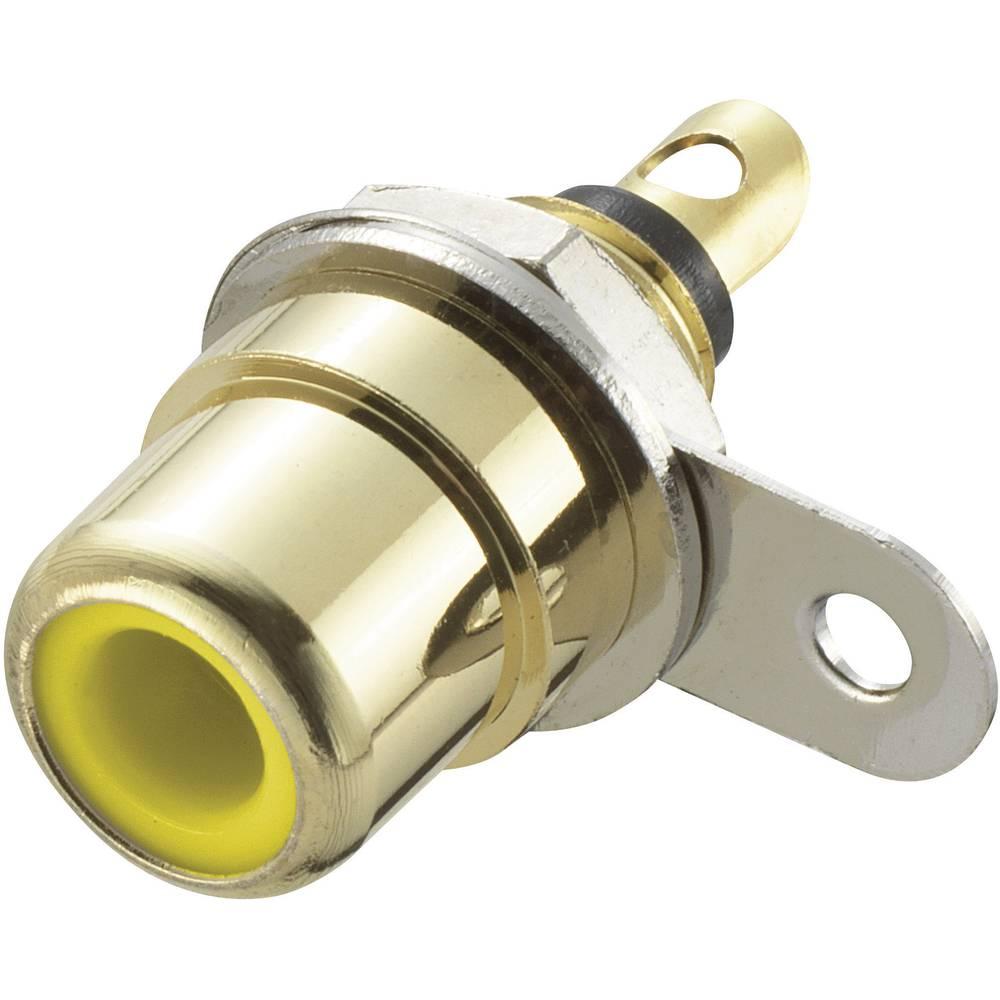Činč konektor, vgradni, ženski, za vertikalno vgradnjo, število polov: 2, rumen, 1 kos