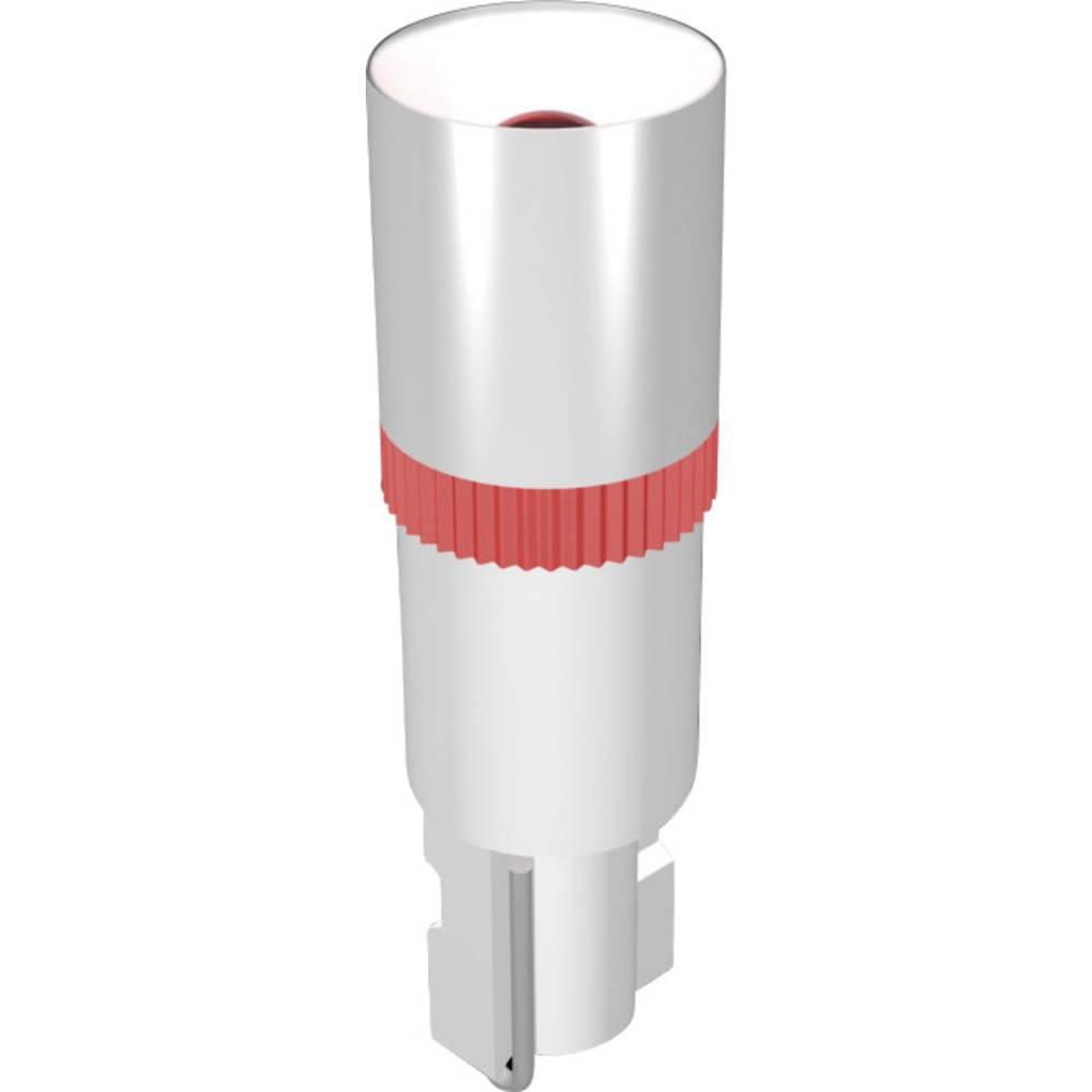 LED žarnica W2x4.6d zelena 24 V/DC 100 mcd Signal Construct MEDW4624