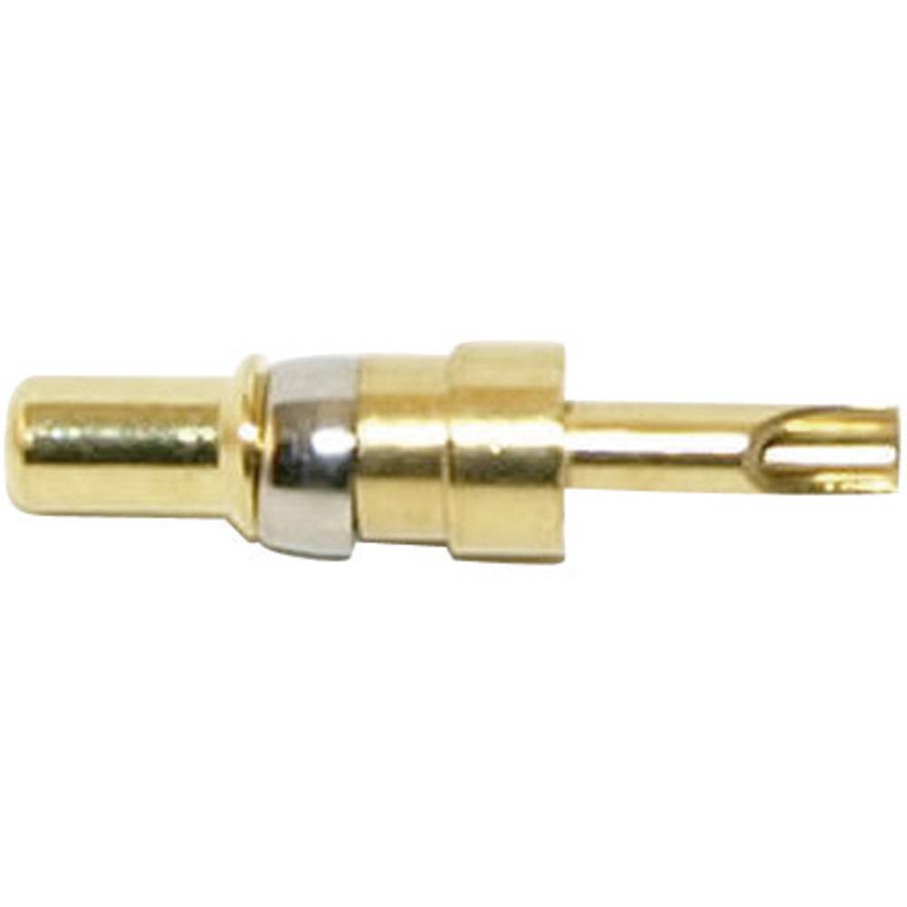 Moški kontakt za močnostni moški konektor Conec 131C10029X,raven, vsebina: 1 kos