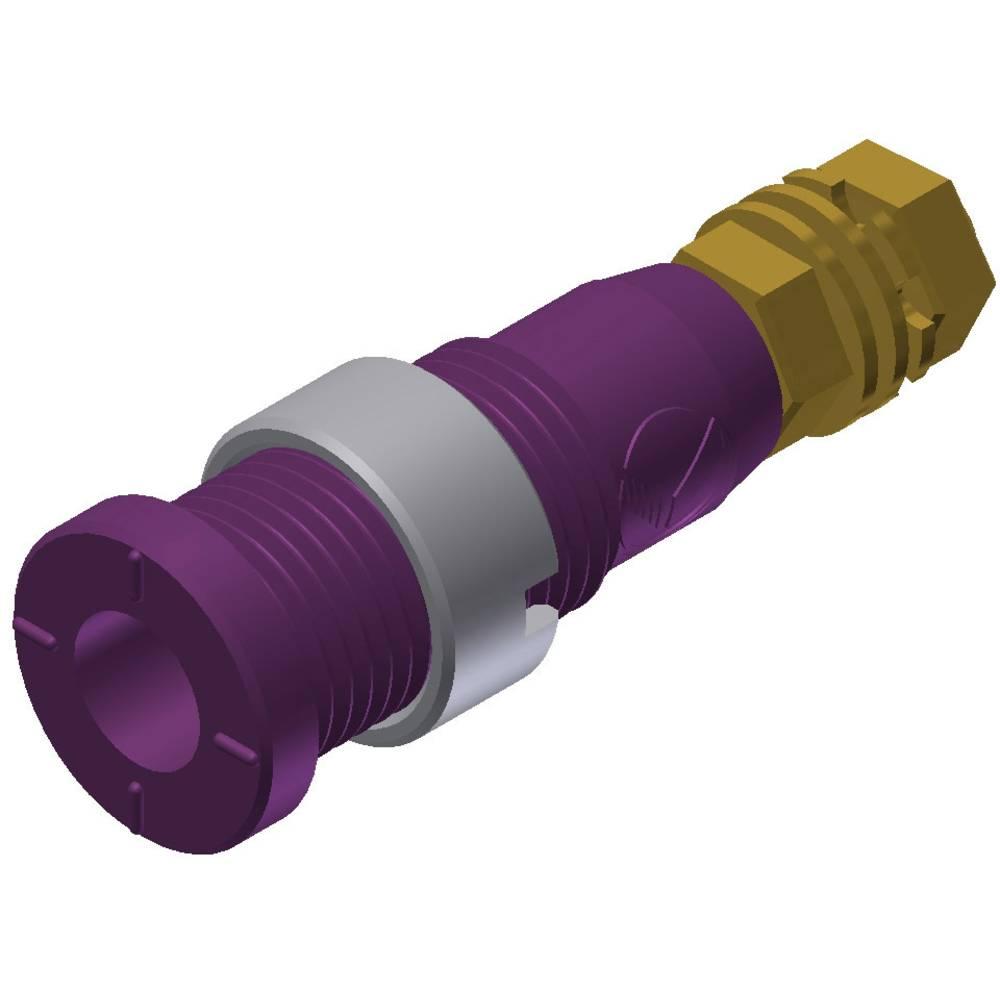Sikkerheds-laboratorietilslutning Tilslutning, indbygning lodret SKS Hirschmann MSEB 2600 G M3 Au 2 mm Violet 1 stk