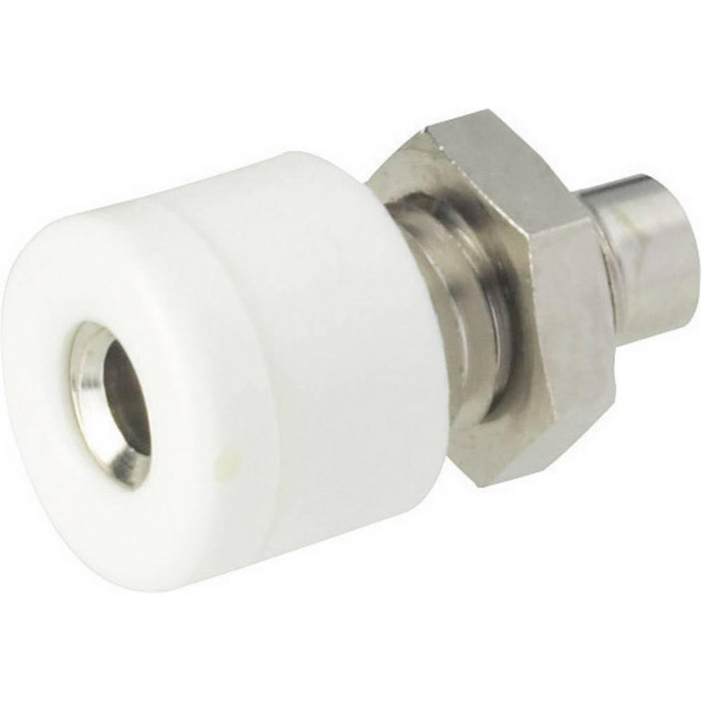 Miniaturelaboratorie-tilslutning Tilslutning, indbygning lodret Schnepp 2.6 mm Hvid 1 stk