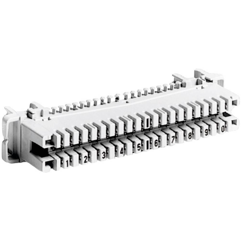 LSA-PLUS ® -lister modelrække 2 ADC Krone 6089 1 120-01 Grå 1 stk