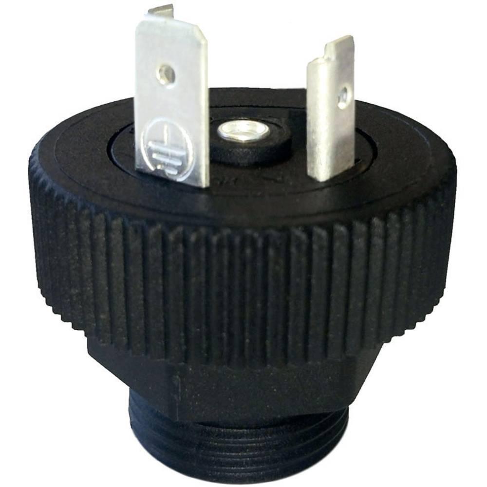 Ventil plug BGRN HTP BGRN02000-PG11 Sort 1 stk