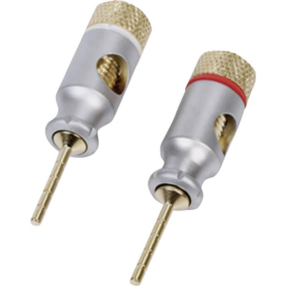 Konektor za zvočnik, število ravnih polov: 1, pozlačen, 1 kos