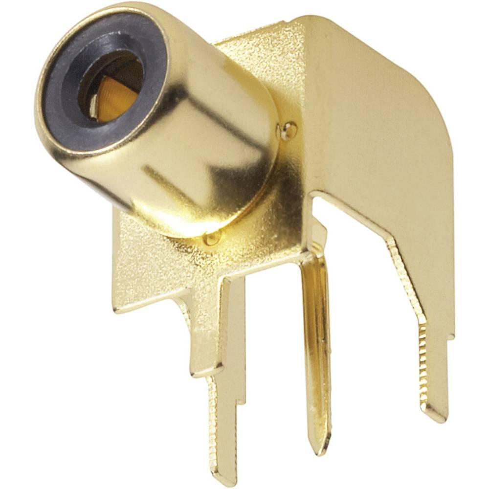 Cinch vgradna vtičnica pozlačena 1103045 BKL Electronic