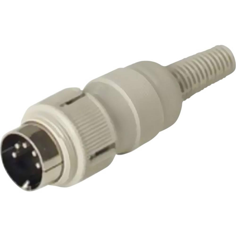 DIN- okrogli konektor-vtič, raven št.polov: 4 siv Hirschmann MAS 4100 1 kos