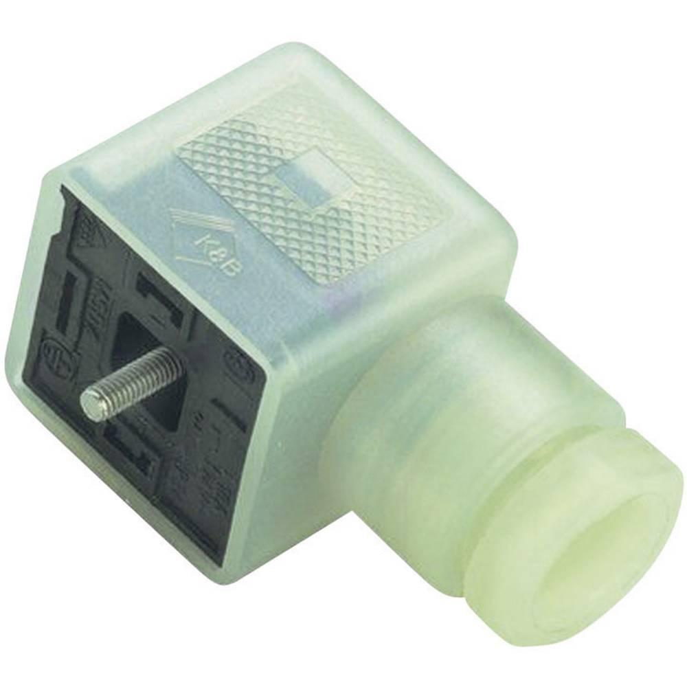 Magnetventil stik byggeri type A Series 210 Binder 43-1714-136-03 Transparent 1 stk