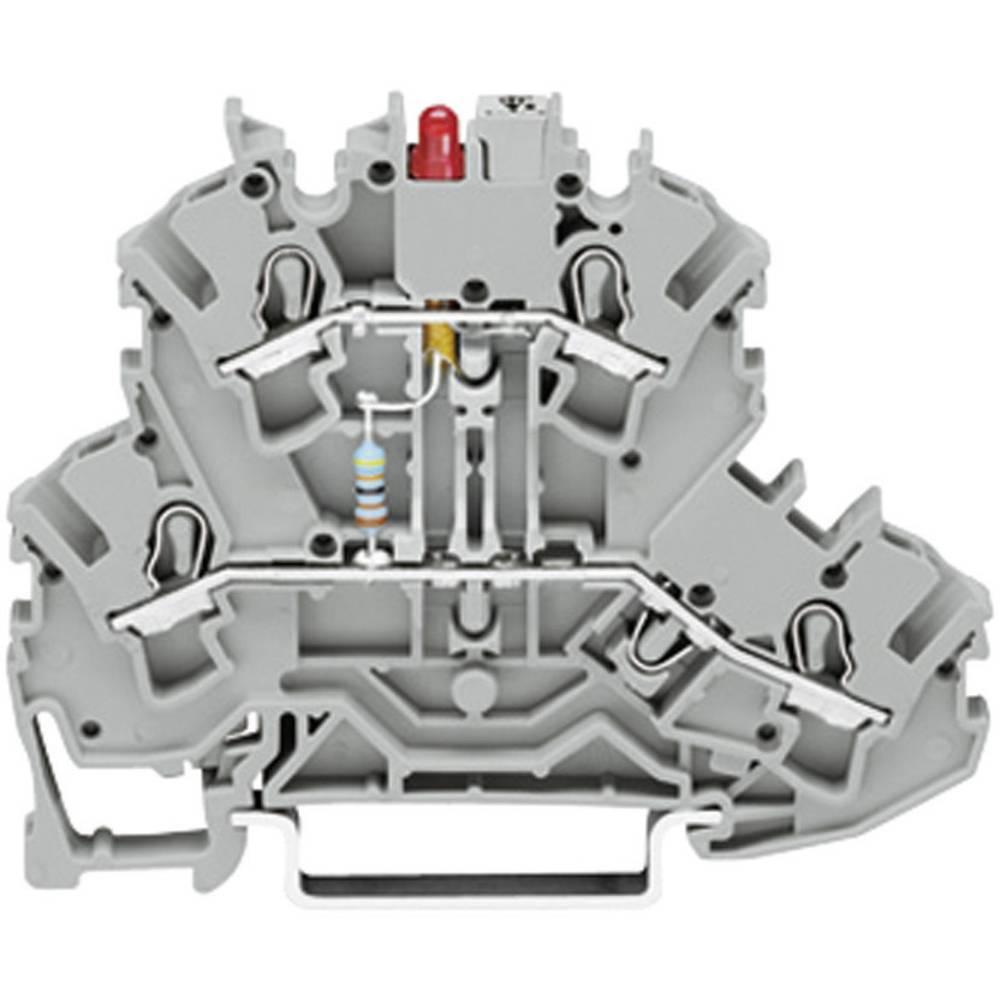 Dobbeltlags diodeklemme 5.20 mm Trækfjeder Belægning: L Grå WAGO 2002-2211/1000-410 1 stk