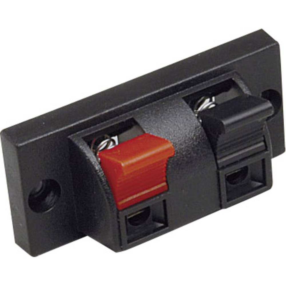 Priključek za zvočnike s sponkami s priključnimi letvami, število polov=2 BKL Electronic 205025