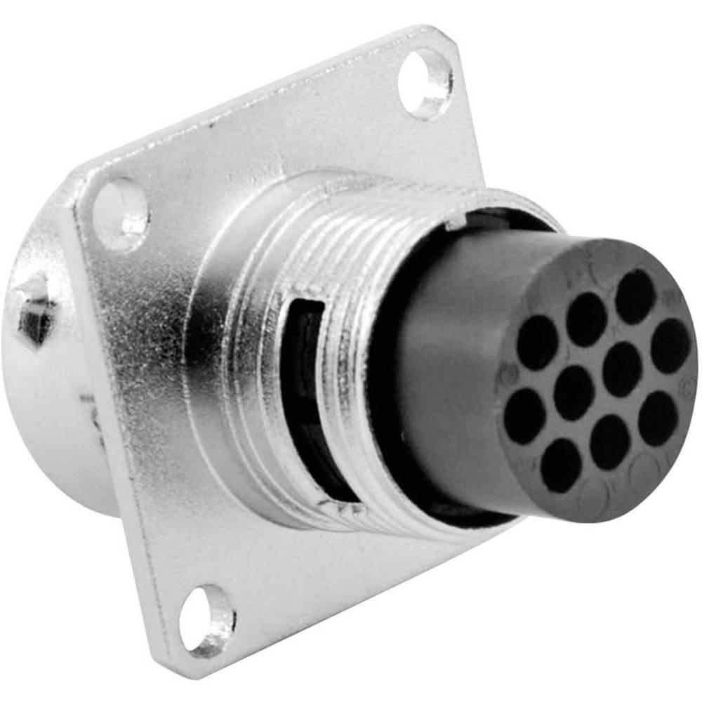 Moški konektor za naprave Amphenol Tuchel RT0012-10PNH, nazivni tok: 5 A, poli: 10