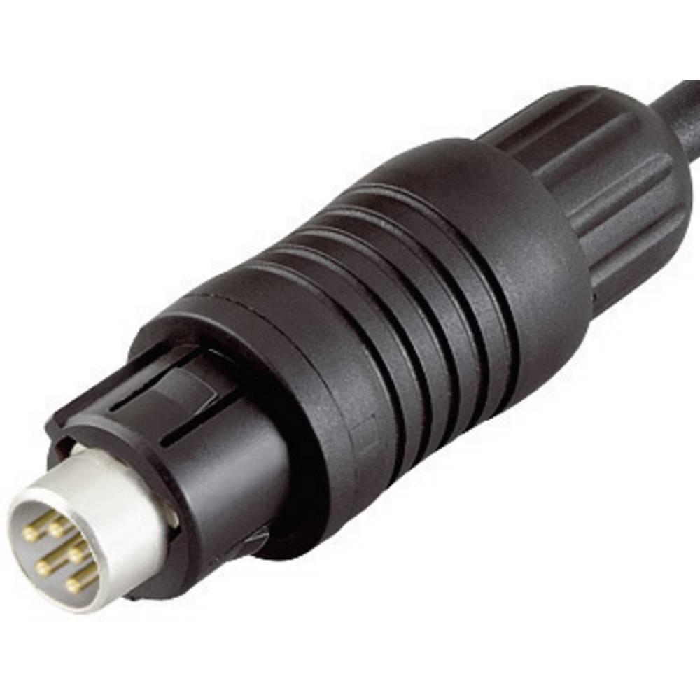 Mini okrogli konektor Binder serije 430, 99-4905-00-03, nazivni tok: 3 A, poli: 3, 1 kos