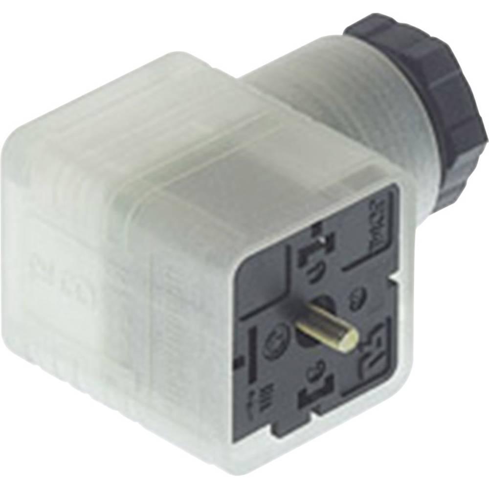 Ledningsdåse med funktionsviser Hirschmann GDML 2011 LED 24 HH 2 + PE Transparent 1 stk