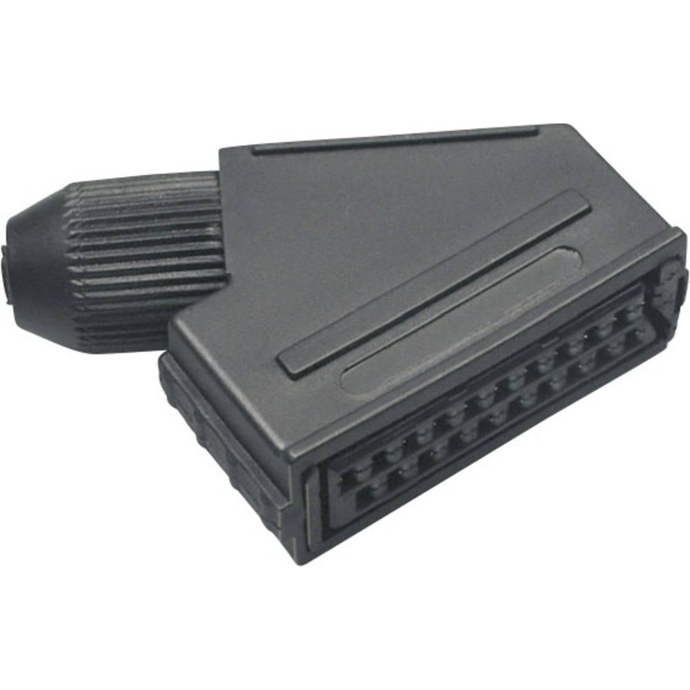 Scart spoj 903014 BKL Electronic