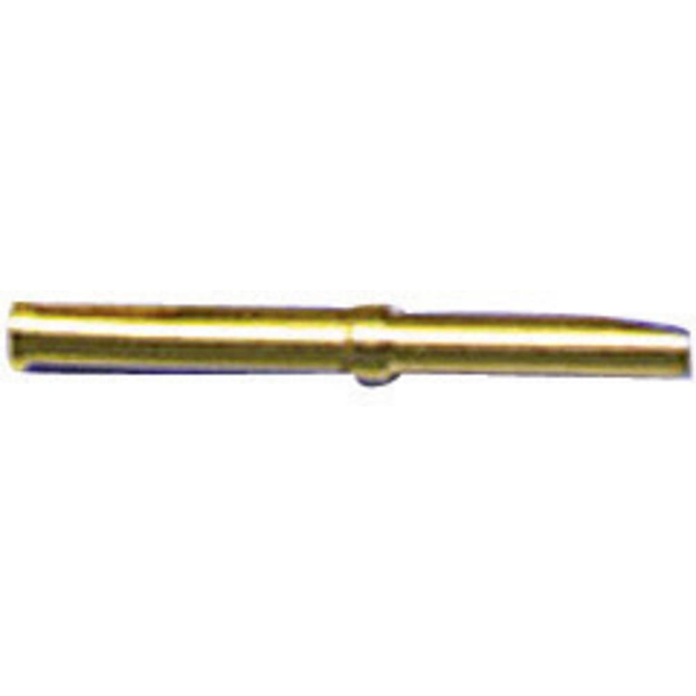Kontakt za konektor za kabel ESKA Bulgin SA3179/1, nazivni tok: 1 A, poli: 1, 10 kosov