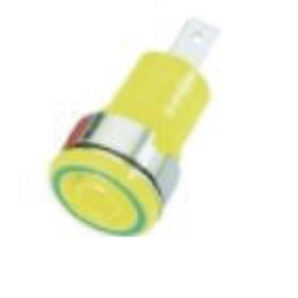 Sikkerheds-laboratorietilslutning Tilslutning, indbygning lodret Stäubli SLB 4-F6,3 4 mm Grøn-gul 1 stk