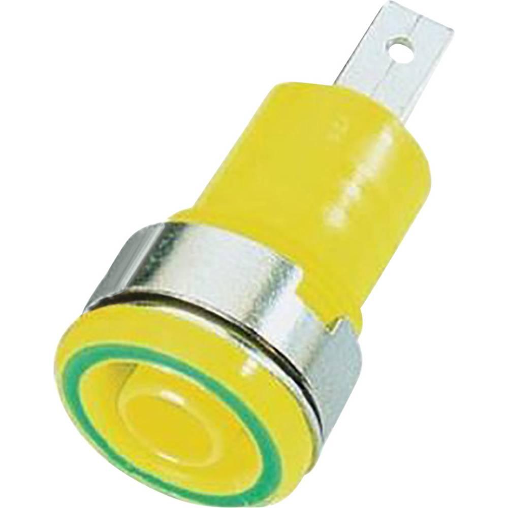 Sikkerheds-laboratorietilslutning Tilslutning, indbygning Stäubli SLB4-F/A Grøn-gul 1 stk