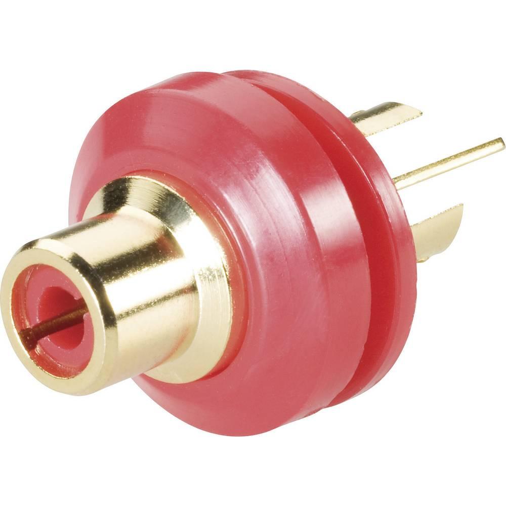 Cinch vgradna vtičnica, pozlačena 0101148/T rdeča, BKL Electronic