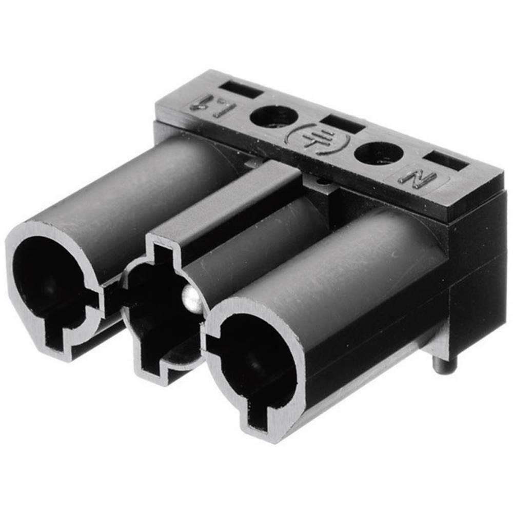 Mrežni konektor, utikač AC 166 GSTLH/ 3 Adels-Contact pod kutem broj polova: 3 16 A crna 1 komad