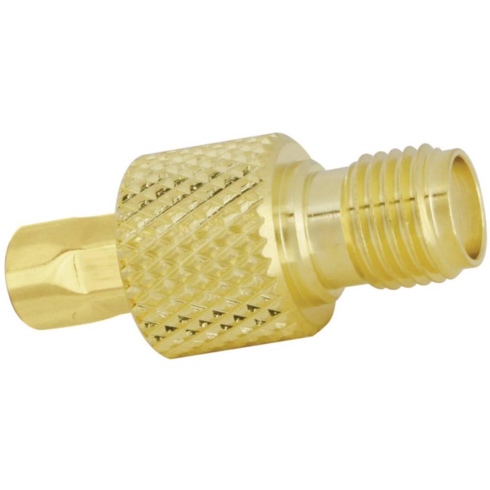SMA ženski konektor SSB Aircell 5, raven, pozlačena medenina, za stiskanje, vsebina: 1 kos 7751