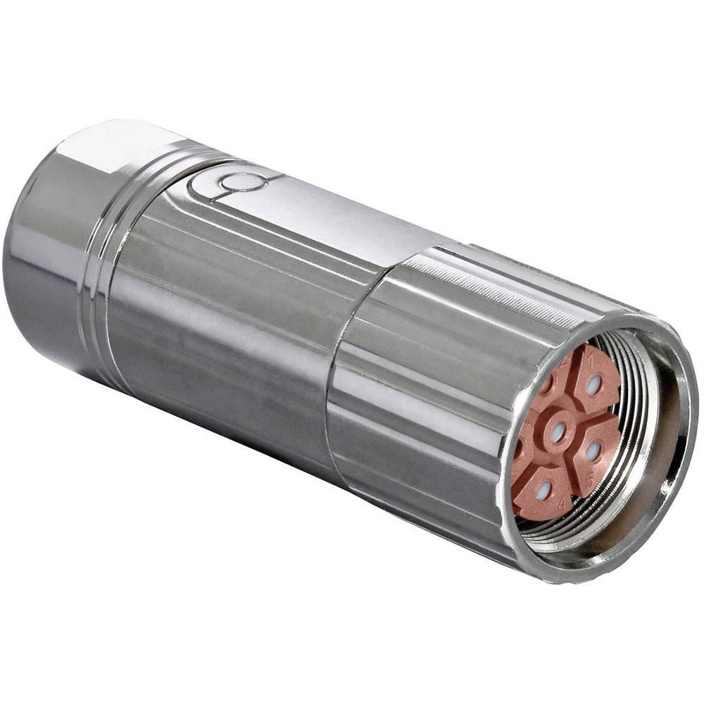 Industristikforbindelse M23 serie 923 - effektstikforbindelse Intercontec BSTA085FR03480235C00 1 stk