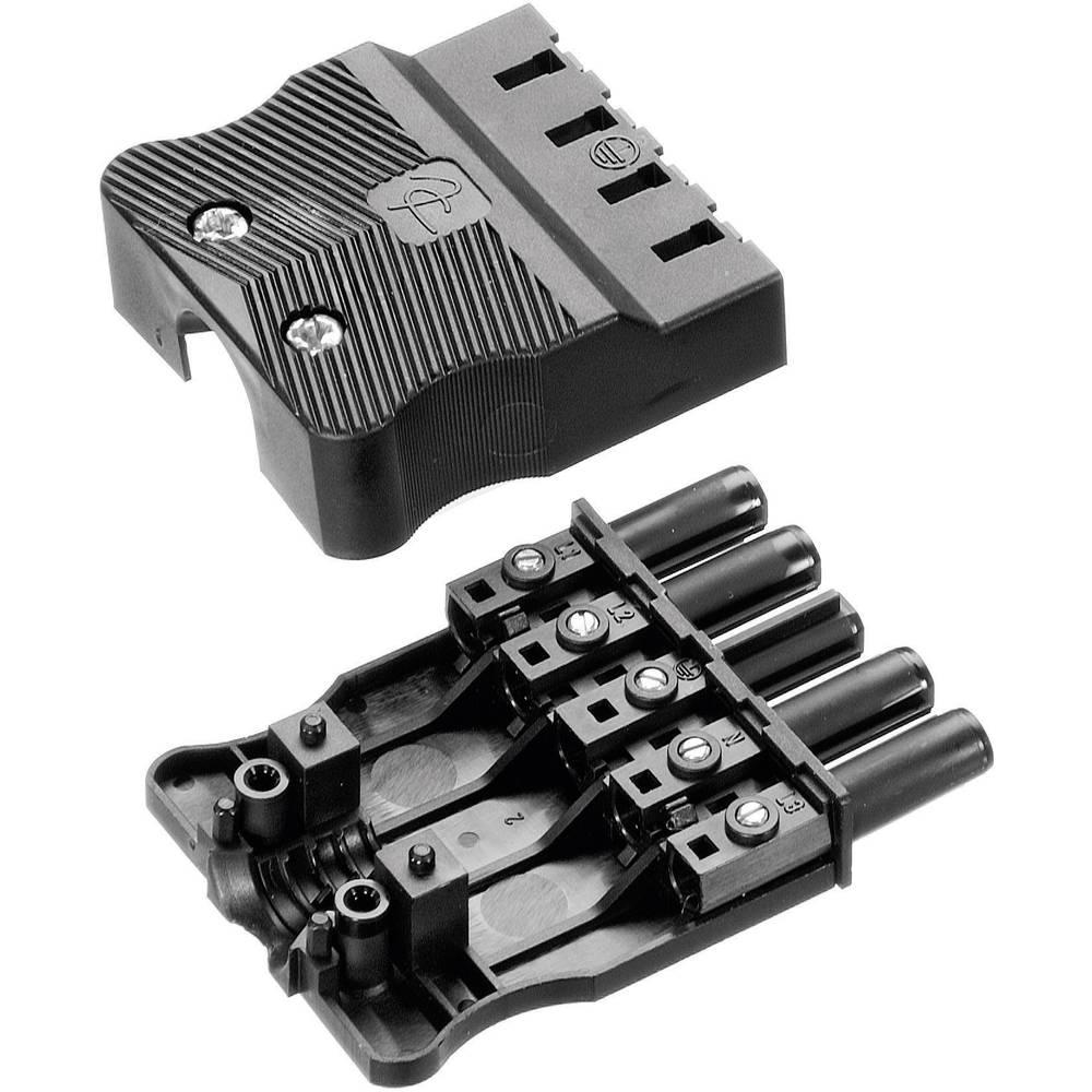 Mrežni konektor AC 166 GBUF/ 525 Adels-Contact ravni, broj polova: 5 16 A bijela 1 komad