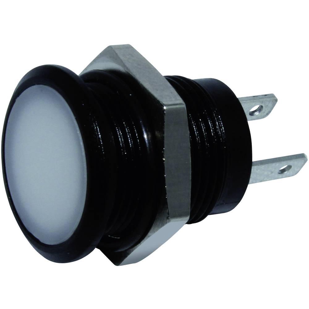 LED signalna lučka, bela 24 V/DC Signal Construct SKED12614