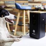 Dogness Smart-Cam-Treater dozator poslastica crna 1 St.