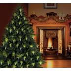 Polarlite LCA-01-002 rasvjeta za božićno drvo  unutra   strujni pogon Broj žarulja 20 LED toplo bijela Osvjetljena dulji