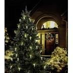 Polarlite PCA-01-001 rasvjeta za božićno drvo  vani  strujni pogon Broj žarulja 16 LED toplo bijela Osvjetljena duljina: