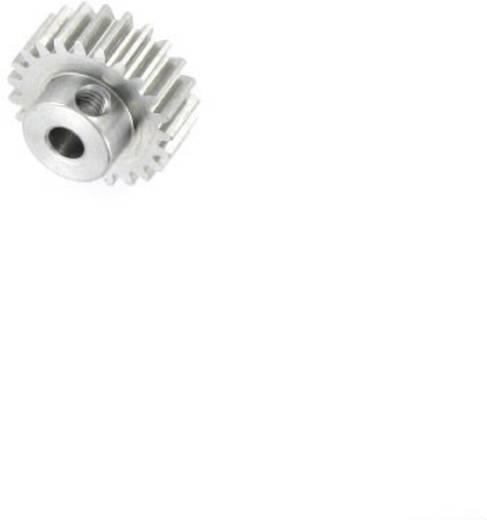Motor fogaskerék Reely Modul típus: 0.6