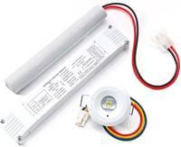 ESYLUX EN10080029 LED-es menekülési útvonal vészvilágítás Mennyezetre történő szerelés ESYLUX