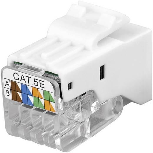 KeyStone Jack CAT 5e UTP csatlakozó, szerszám nélküli szerelésű, Goobay 95739