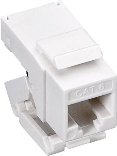 KeyStone Jack CAT 6 RJ45, toolless, UTP, SNAP-IN