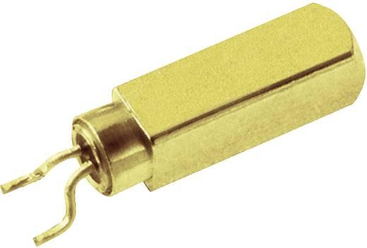 Órakvarc, MicroCrystal MS3V-T1R 32.768kHz 12.5pF +/-20ppm TA QC Kivitel 2-PAD SMD, 6.7 x 1.4 x 1.48 mm