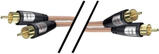 RCA audio kábel, 2x RCA dugó - 2x RCA dugó, 3 m, aranyozott, átlátszó, Inakustik 1012783