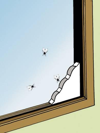 Rovar- és légyfogó készlet ablakba, 2 részes, Swissinno 1 303 202